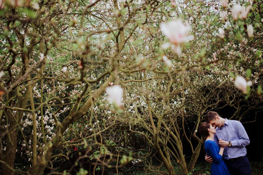 sesja narzeczeńska magnolie