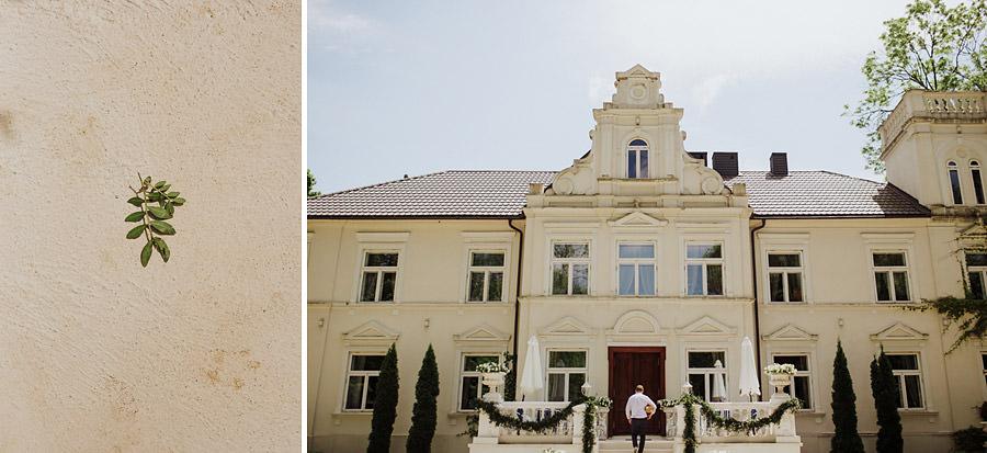 Pałac Pstrokonie detale